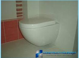 Hur man installerar på toaletten med sina egna händer