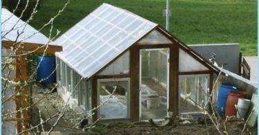 Växthuset i den gamla fönsterkarmen med händerna
