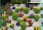 Arbetet i trädgården i mars månad: hur man tar hand om din trädgård?