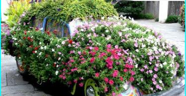 Hur man väljer en motorsåg för hem och trädgård - som är bättre och varför?