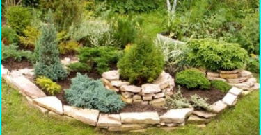 Hur man väljer en trädgård spruta: översyn av alternativen + tips om hur du väljer