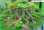 Hur man gräva en brunn med sina händer inomhus och utomhus metoder